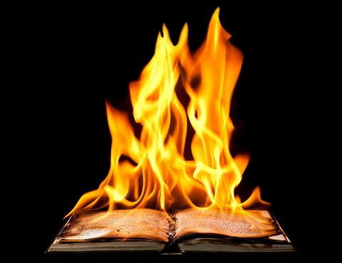 Dreamstime image burning book